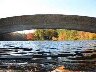 Matthies Park Bridge